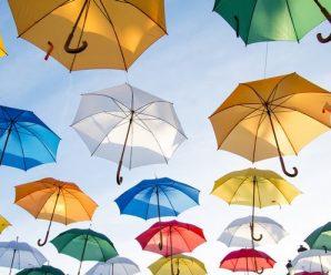 Assurance : les risques couverts en cas de cyclone