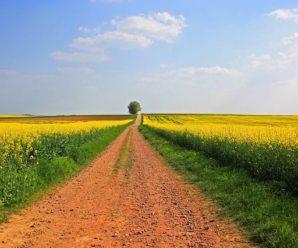 Qu'est-ce que l'assurance multirisques agricole ?